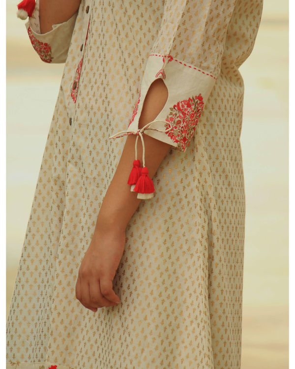 Golden red printed embroidery dress 2