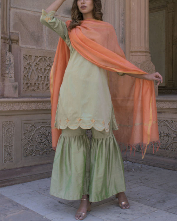 Pastel green cut work set with dupatta 1