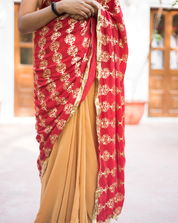 Red and brown printed sari 1
