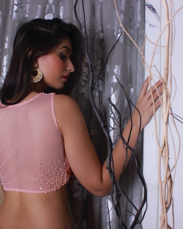 Peach blouse with shaded sari 2