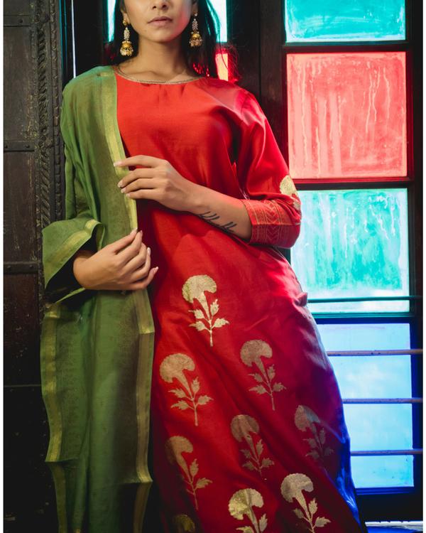 Meena kari printed set with dupatta 1