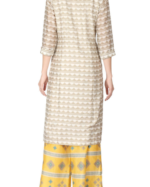 Quirky kurta and palazzo set 2