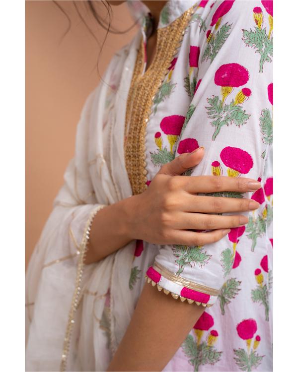 Pink poppy motif suit set with gota detailed chanderi dupatta - set of three 2