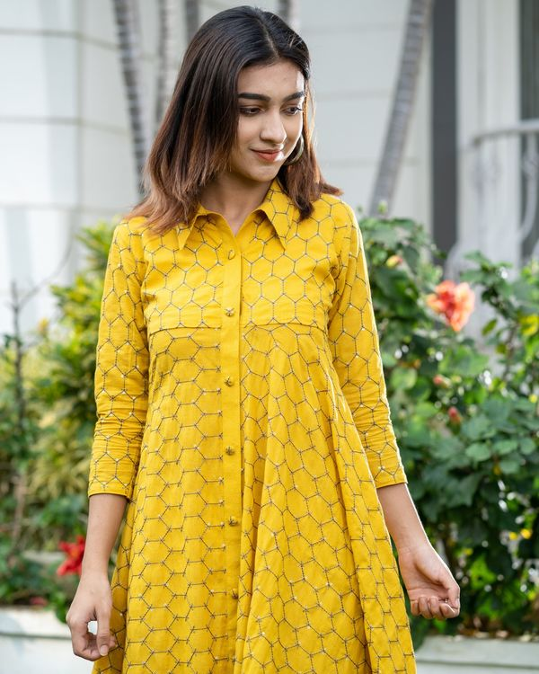 Yellow web embroidered collar dress 1
