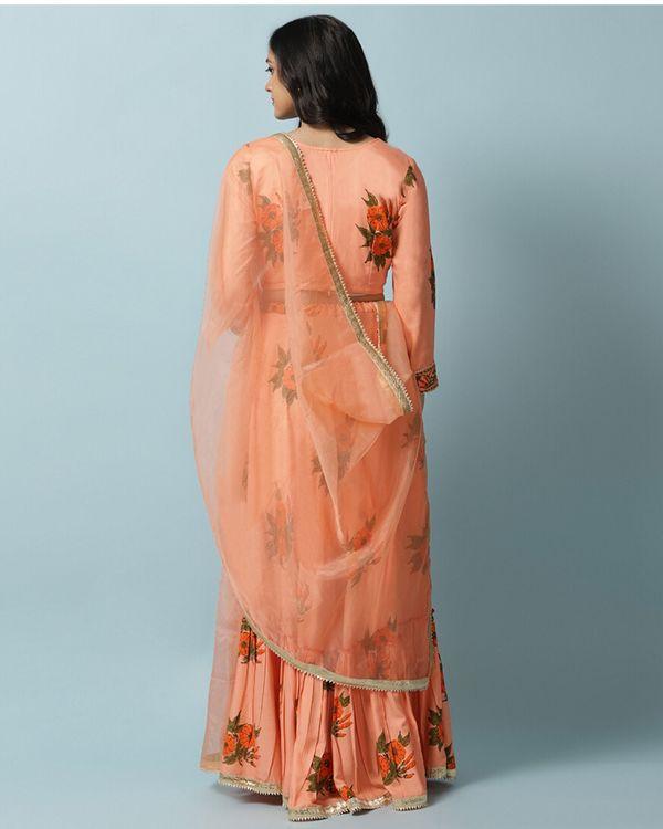 Orange petunia lehenga and choli with dupatta- Set Of Three 3