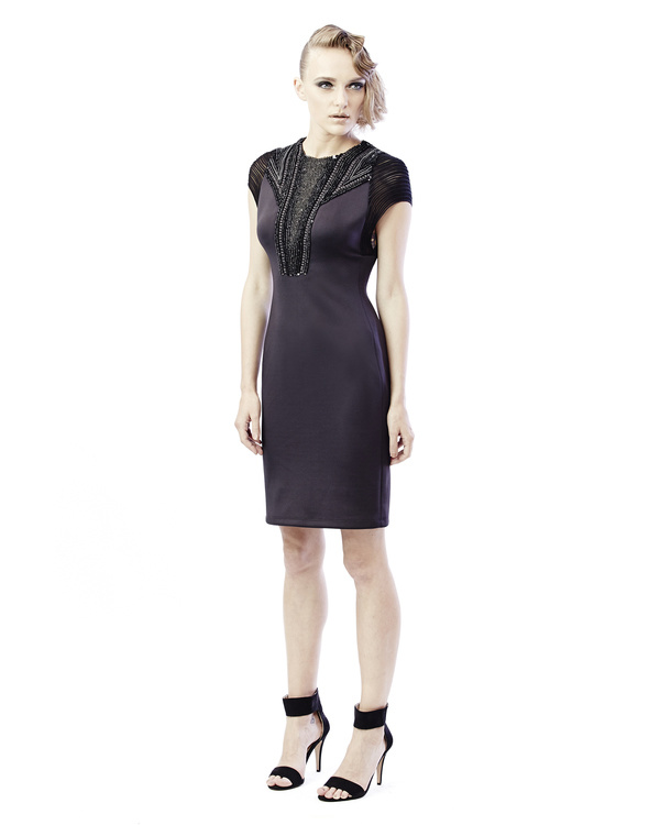 Mesh and embroidered shift dress 3