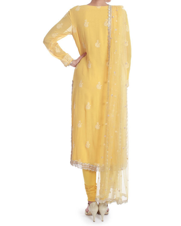 Daffodil lucknowi chikan kurta set 2