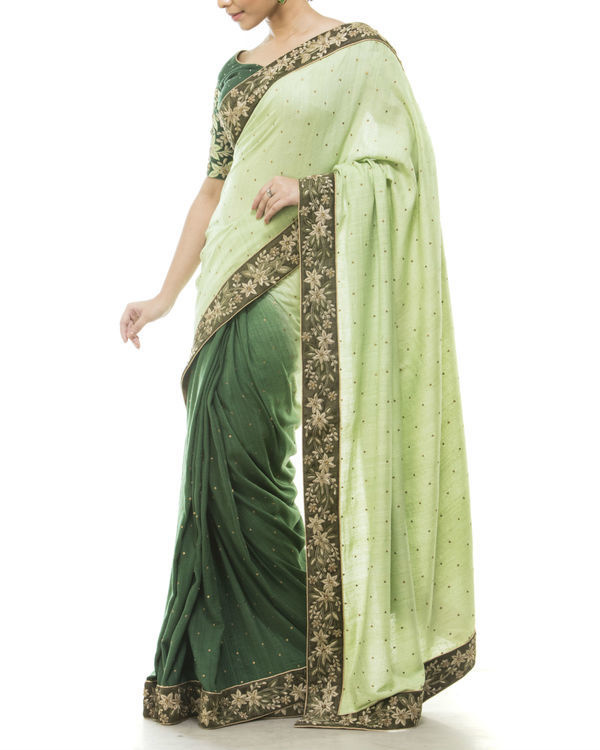 Green embroidered sari 1