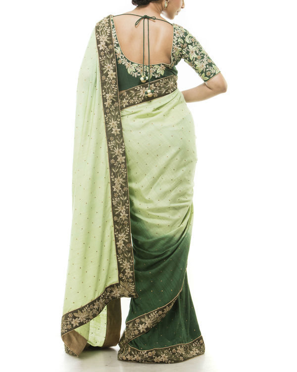 Green embroidered sari 2