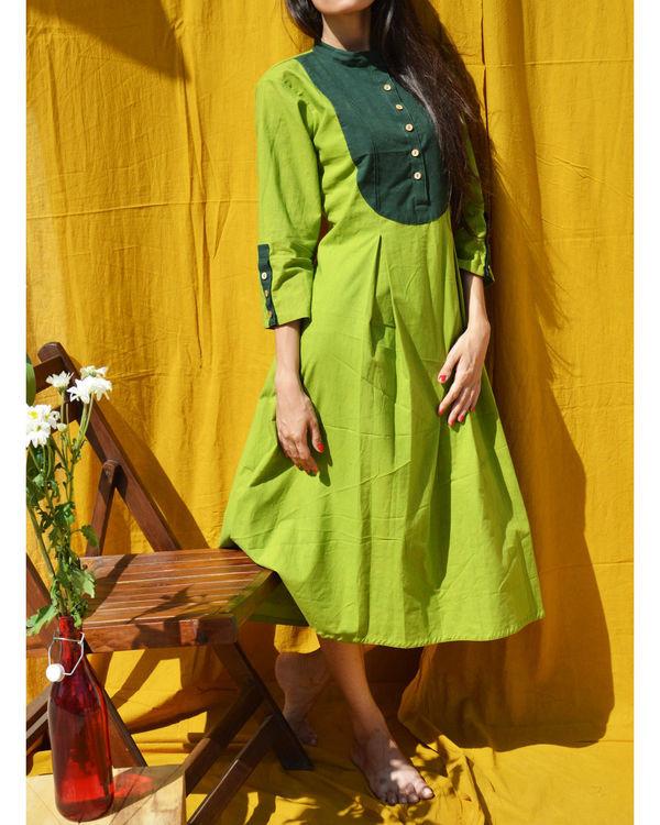 Green a-line tunic 1