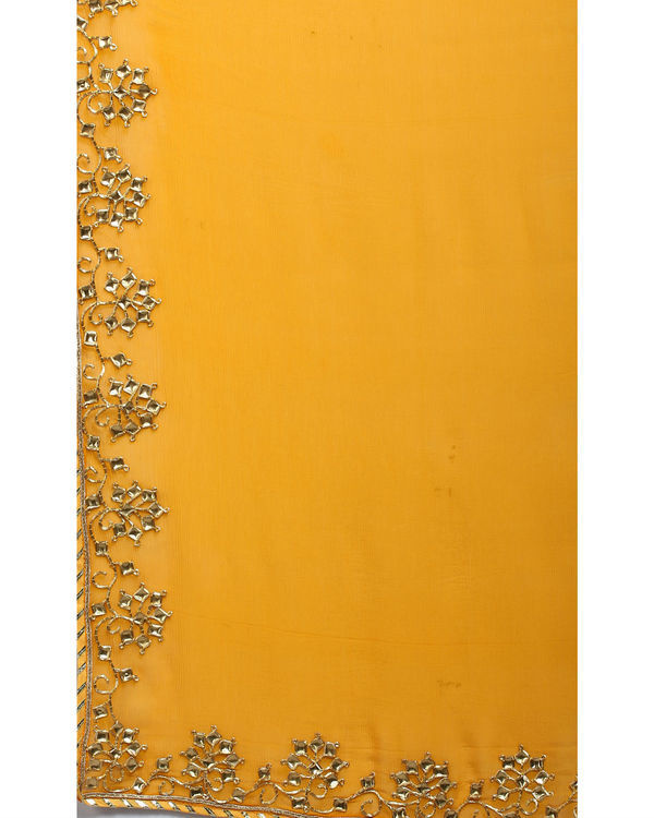 Saffron and gold sari 2