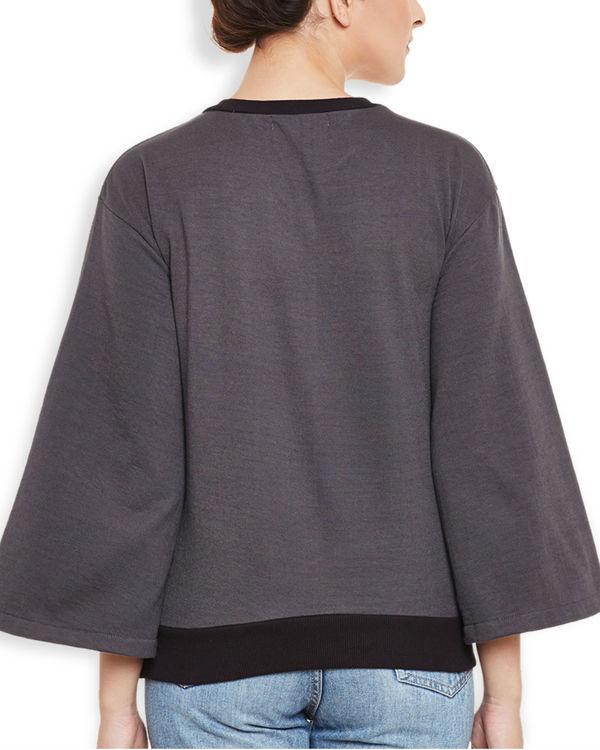 Koinobori sweatshirt 3