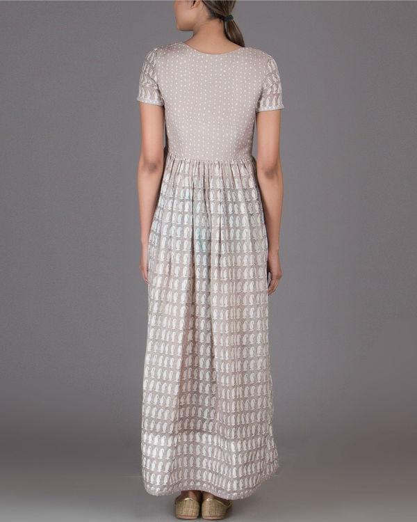 Polka paisley dress 2