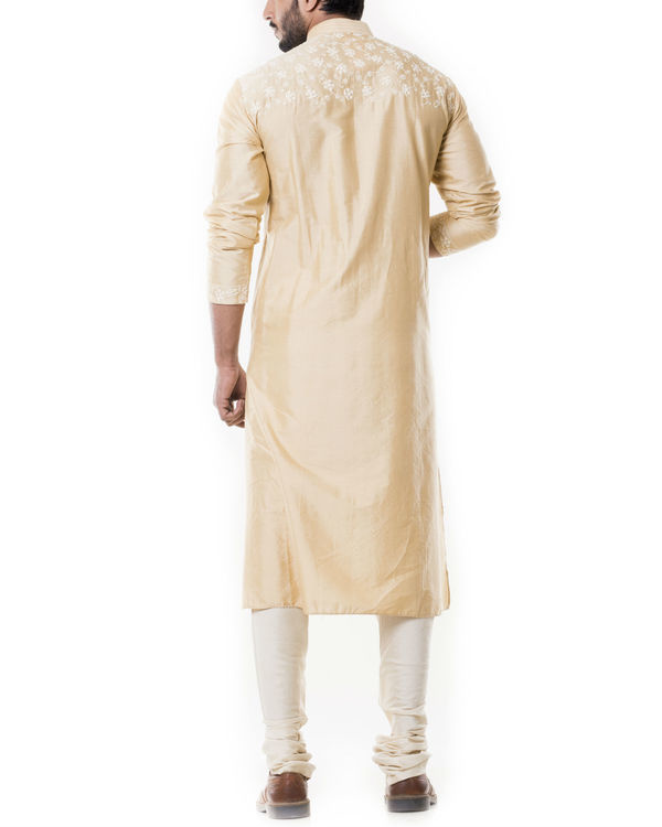 Sherwood tan kurta set with full dori embroidery 3