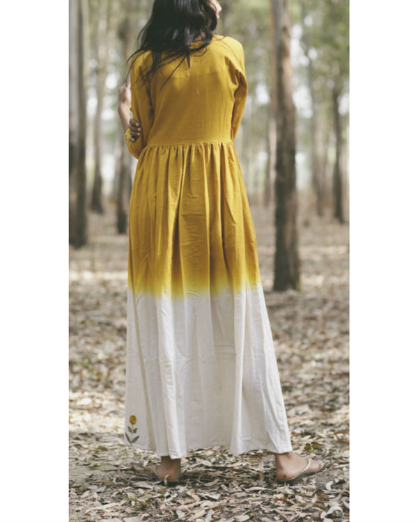 Dandelion fit and flare dress 3