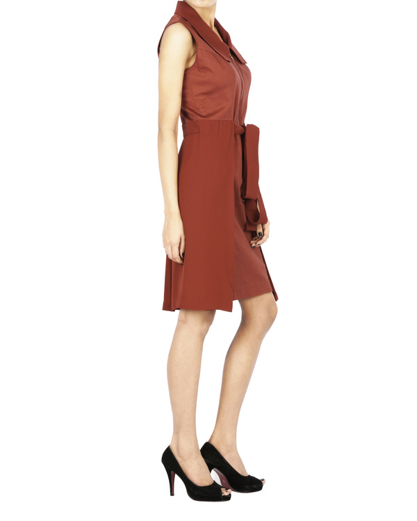 Brick red collar dress 2