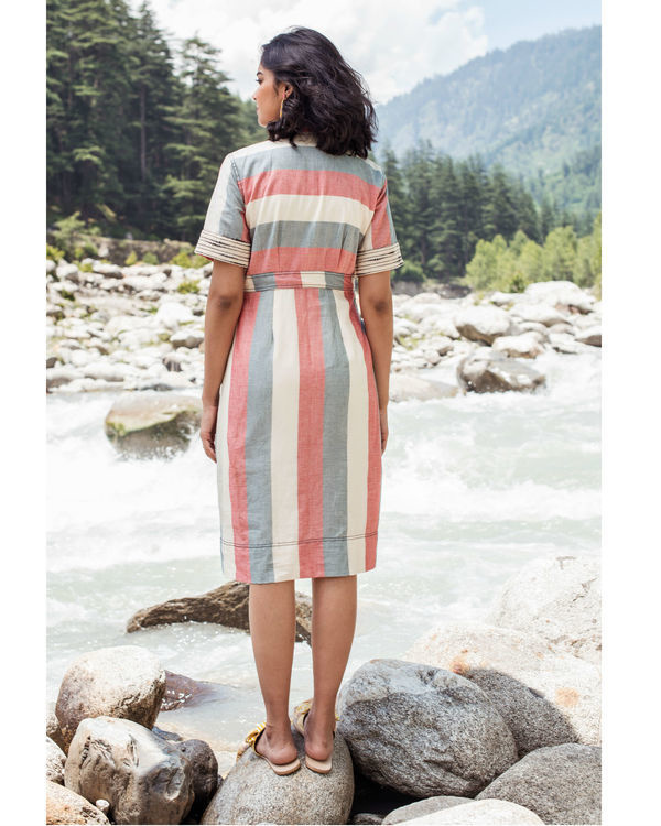 Rainforest striped dress 1
