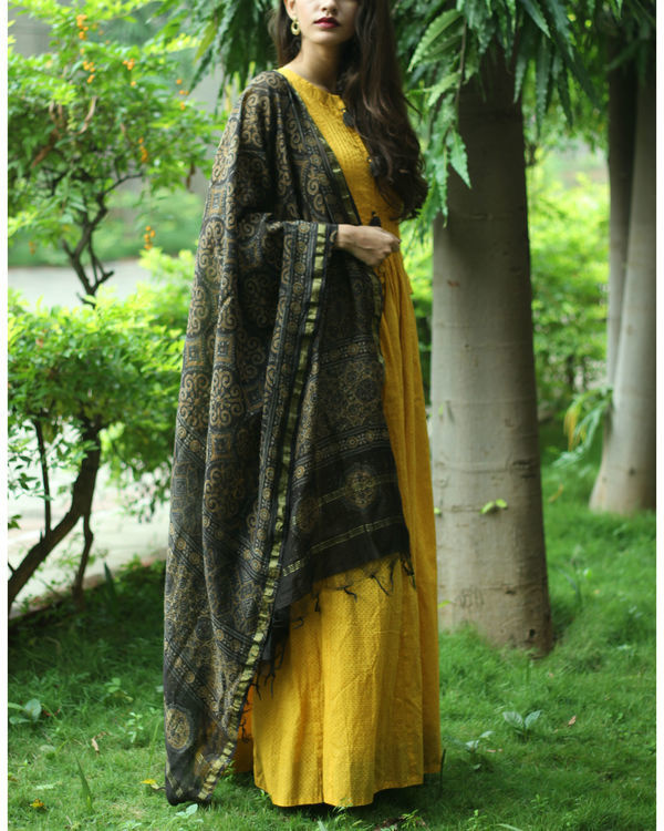 Dandelion tunic with dupatta 2
