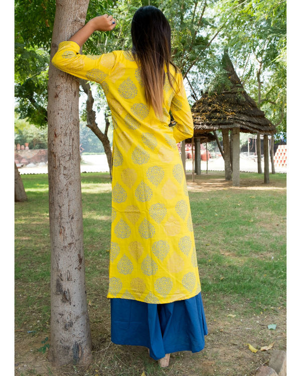Blue and Yellow double layered dress 2
