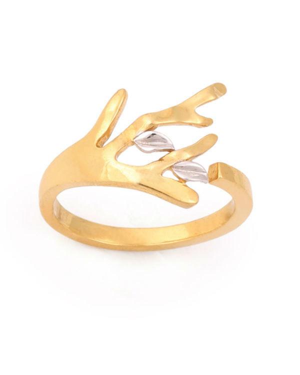 Velvety Embark Ring 1