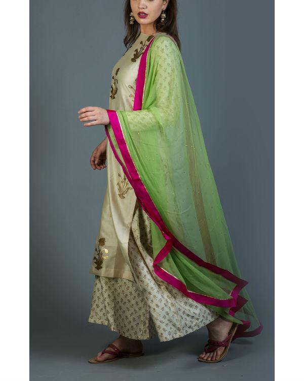Shahi kurta set with lime green dupatta 4