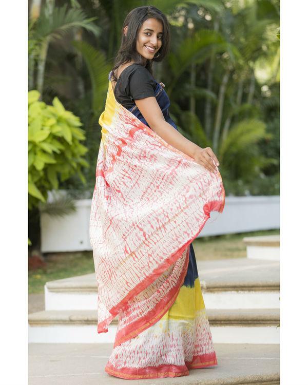 Multi bordered navy sari 2