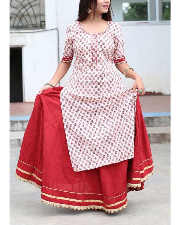Mehrooni flare solid skirt 2