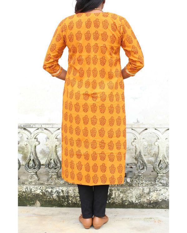 Haldi chandan bagh print shrug with crop top 1