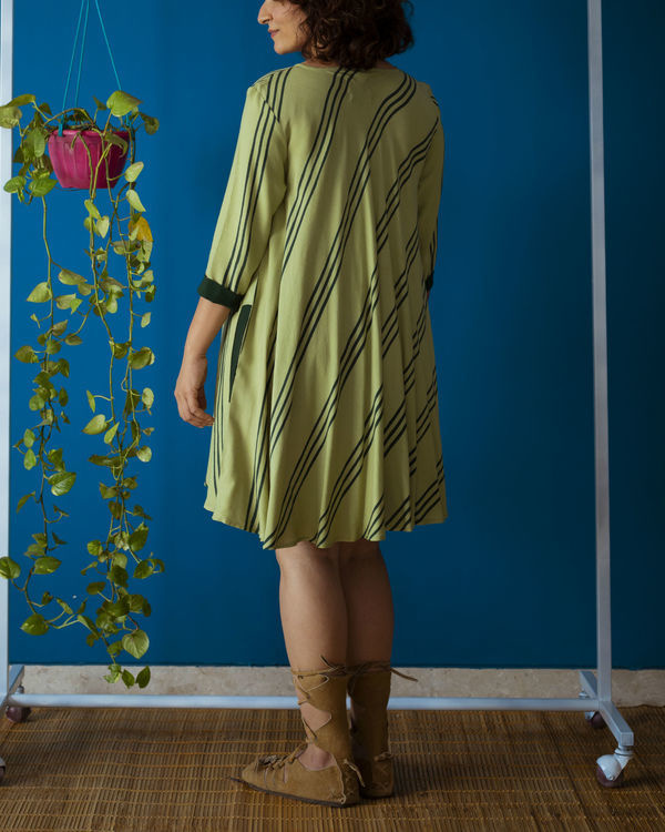 Pista Green Flared Day Dress 2