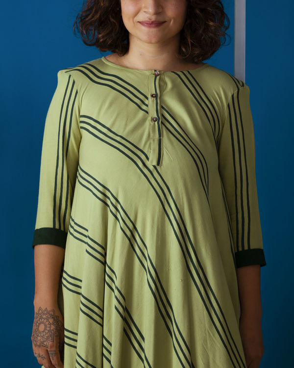 Pista Green Flared Day Dress 1